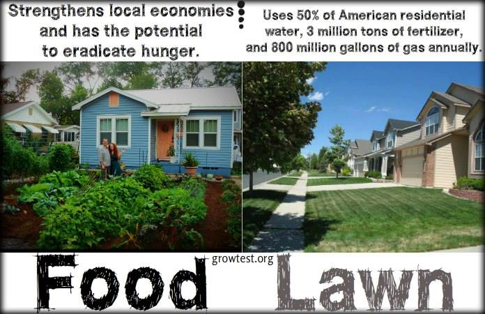 food lawn